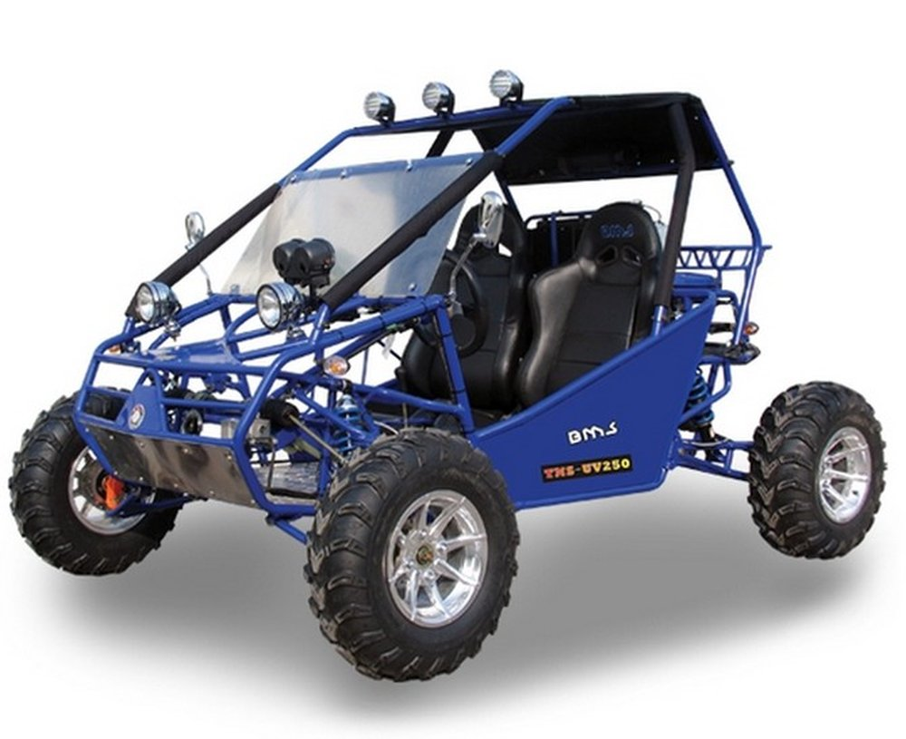 Power Buggy 250 Bms Motorsports Motorcycle Review And